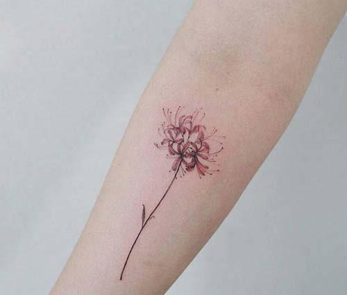 Hình xăm hoa bỉ ngạn ở tay