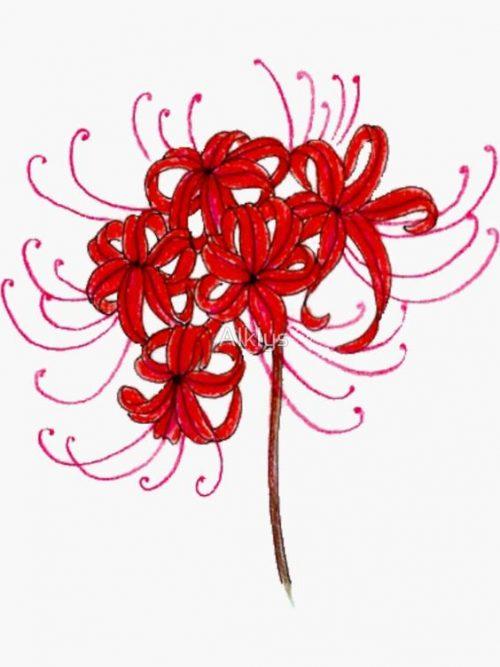 Mẫu hình xăm hoa bỉ ngạn